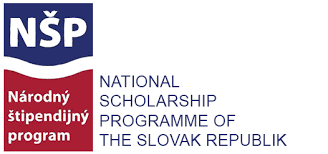 Slovacia – prelungire termen